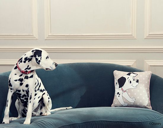 子犬と水玉柄が愛らしいクッションは、インテリアにファニーなアクセントをプラス。