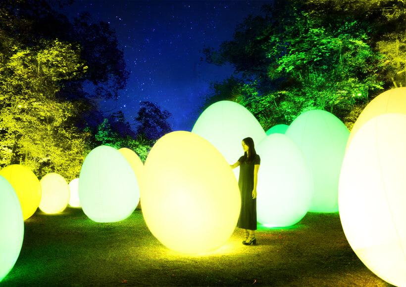 チームラボ 森と湖の光の祭